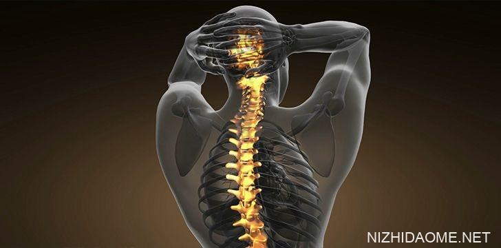 我们有缺陷的脊椎