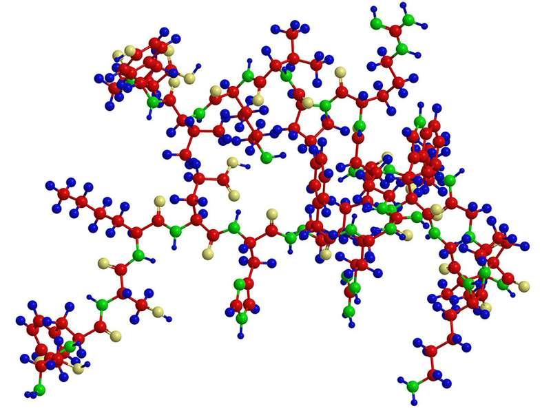 肽的分子结构-氨基酸序列。