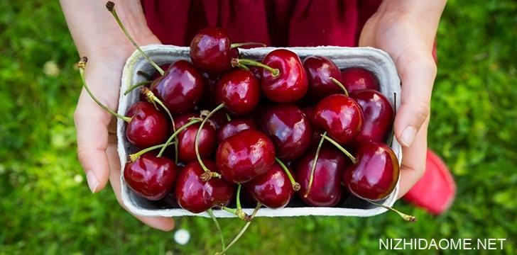 樱桃含有抗氧化剂。