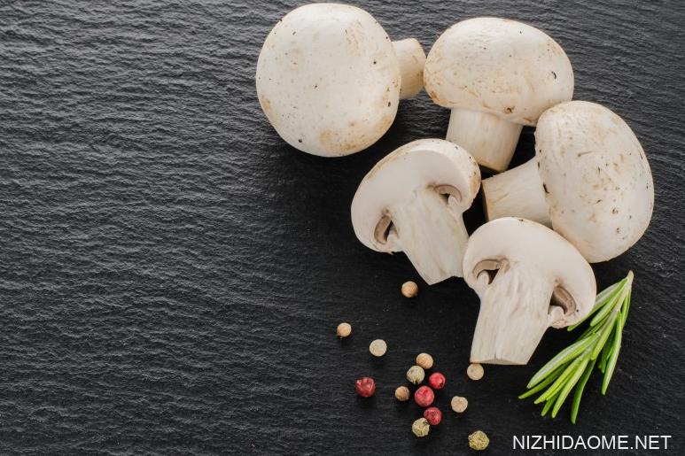 新鲜蘑菇怎么做好吃 新鲜蘑菇煮多久可以熟
