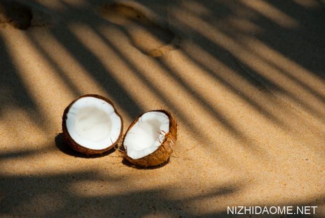干椰子肉可以直接吃吗 干椰子肉怎么吃才好吃