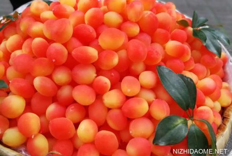 金西梅是什么水果 金西梅是染色的吗