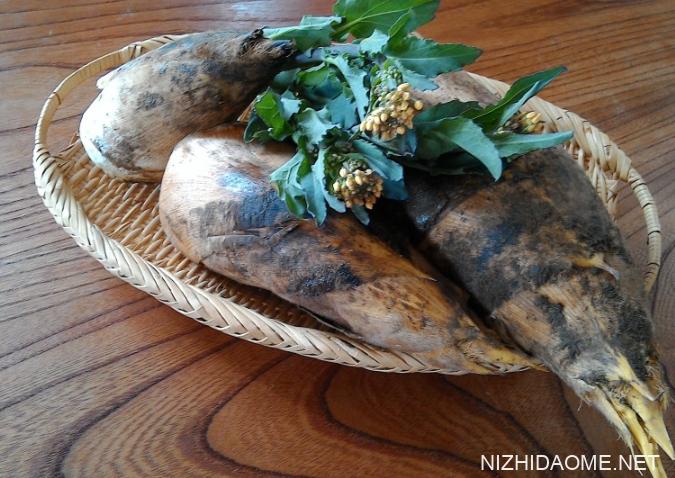 新鲜竹笋怎么保鲜储存 新鲜竹笋如何处理能长期保鲜