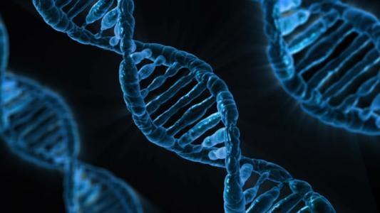 DNA 为啥会自发变异?量子物理学或将揭晓谜团