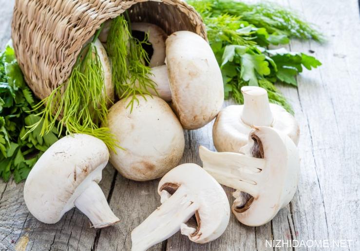 新鲜蘑菇放冰箱冷藏能放几天 新鲜蘑菇怎么保存