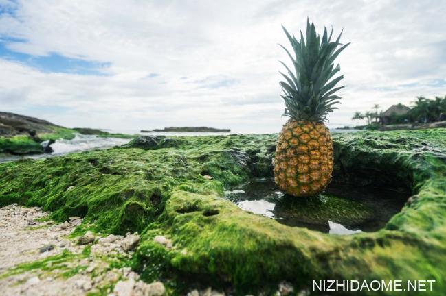 菠萝皮削了怎么保存 菠萝皮没削干净能吃吗