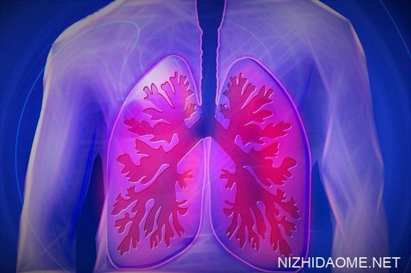 4名大学生返回北京后同时发烧:加湿器不当导致肺炎