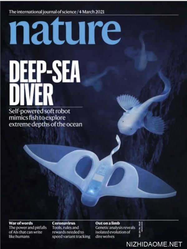 全球首次!国产软体机器鱼实现万米深海自主驱动