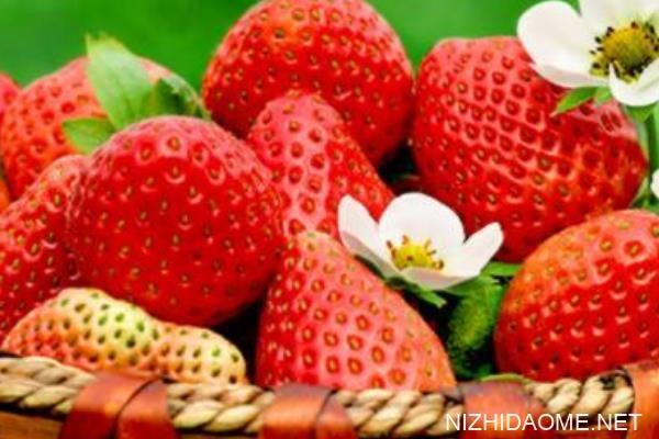 草莓要怎么保存不会坏 草莓要放冰箱里吗