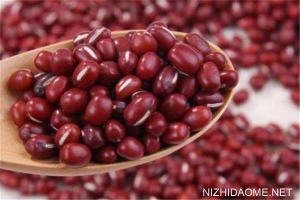红豆和赤小豆有什么区别 红豆和赤小豆哪个补血效果好