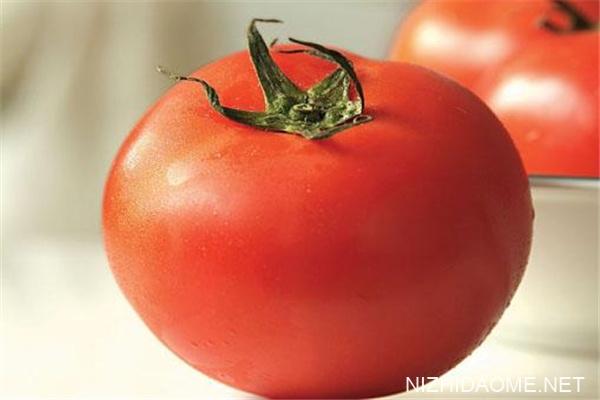 西红柿宝宝能吃吗 西红柿宝宝几个月可以吃