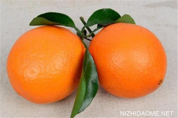 橙子和橘子的区别 橙子和橘子哪个容易上火