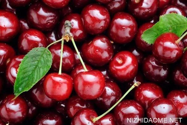 吃樱桃能降血糖吗 血糖高的人能吃樱桃吗