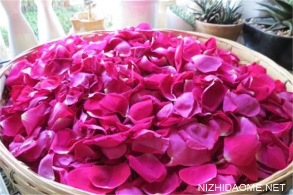 食用玫瑰有什么好处 食用玫瑰有几种