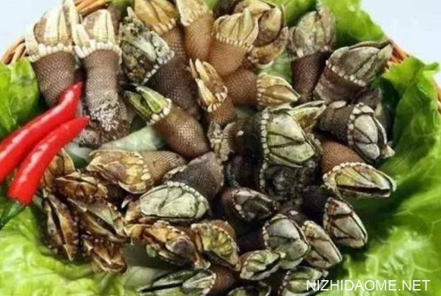 佛手螺怎么吃 佛手螺怎么做好吃
