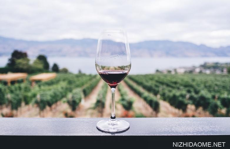 红酒开瓶器怎么使用 红酒开瓶器有哪几种