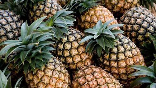 菠萝可以隔夜吃不 菠萝可以放冰箱吗