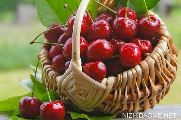 樱桃怎么吃不那么酸 酸樱桃怎么吃