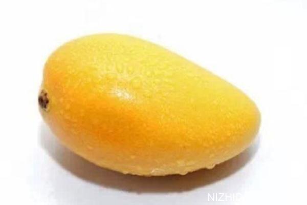 芒果是热性还是凉性 为什么芒果吃了会上火