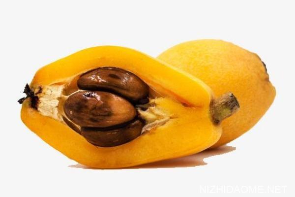 枇杷有几个果核 枇杷果核可以吃吗