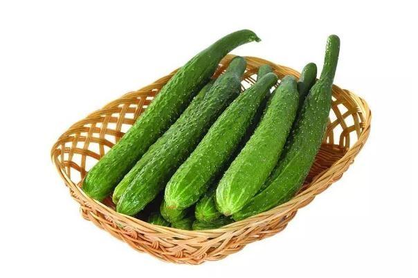 黄瓜有花能吃吗 黄瓜花可以吃吗