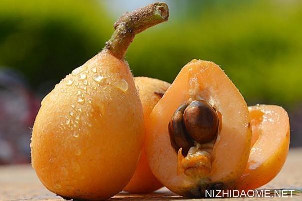 吃枇杷可以治咳嗽吗 直接吃枇杷果能治咳嗽吗